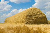 Stack of straw — Stock Photo