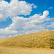 Large stack of straw - Stock Photo
