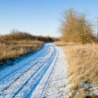 Royalty-Free Stock Photo: Road in winter