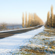 Road in winter — Stock Photo