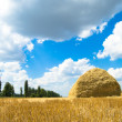 Haystack - Stock Photo