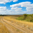 Stock Photo: Road in steppe