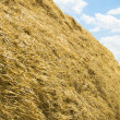 Stack of straw — Stock Photo #5578769