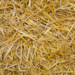 Straw closeup — Stock Photo