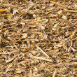 Gold color straw - Stock Photo