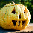 Helloween pumpkin in evening — Stock Photo
