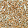 Stock Photo: Grains with husk