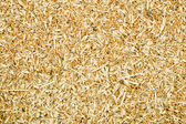 Grains with a husk — Stock Photo