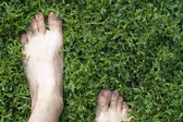 Barefooted on the green grass — Stock Photo
