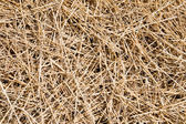 Straw as background — Stock Photo