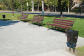 Park in summer — Stock Photo