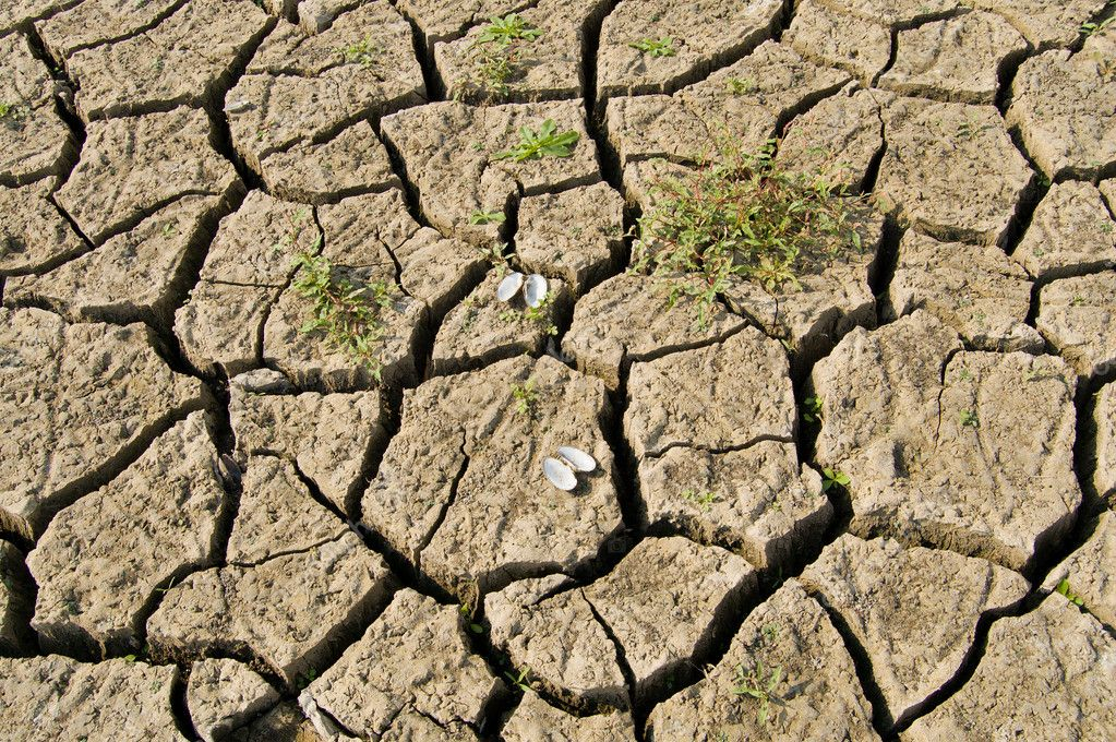 Dried-up earth with cracks — Stock Photo #5578787