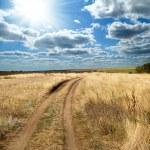 Rural road — Stock Photo #5580099
