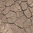 Royalty-Free Stock Photo: Dry soil with cracks