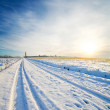 Rural road under snow — Stock Photo #5582418