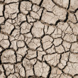 Royalty-Free Stock Photo: Dry earth texture