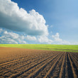 Stock Photo: Ploughed field