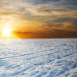 Stock Photo: Sunset over field with snow