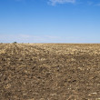 Stock Photo: Arable soil