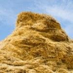 Stack of straw — Stock Photo