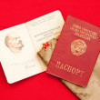 Soviet era passport and party card — Stock Photo