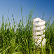 Lamp in green grass — Stock Photo