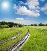 Rural road in green field — Stock Photo