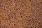 Brown rusty surface — Stock Photo