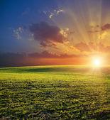 Zemědělský pozemek a západ slunce — Stock fotografie