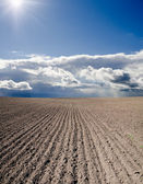 Black ploughed field — Stock Photo