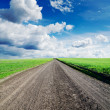 Rural road in green grass — Stock Photo #6132203