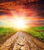 Sunset over cracked rural road — Stockfoto