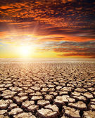 Drought land under red sunset — Stok fotoğraf