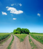 Two rural road — Stock Photo