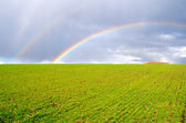 Two natural rainbow — Stock Photo