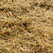 Straw as background — Stock Photo #6364913