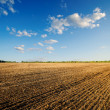 Black ploughed field — Stock Photo #6575650