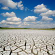Drought land — Stock Photo #6575978