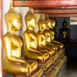 Aligned gold buddha — Stock Photo