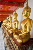 Aligned gold buddha — Stock Photo