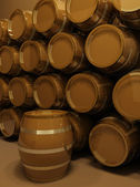 Perspective of barrels. wine cellar — Stock Photo