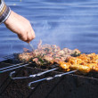 Chicken and lamb on grill - Stock Photo