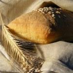Постер, плакат: White bread ans cereal
