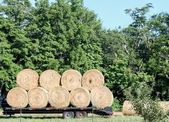 Hay Loaded And Ready To Go. — Stock Photo