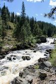 Little Salmon River In Idaho — Stock Photo