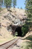 Old Railroad Tunnel — Stock Photo