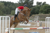 Horse and rider jumping an obstacle — Stock Photo