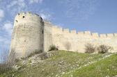 中世纪堡垒 villeneuve 拉拉阿维尼翁 — 图库照片