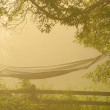 Stock Photo: Hammock at sunrise with dense fog.