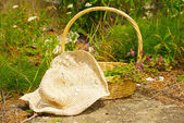 Rustic country scen with herbs and straw hat.. — Stock Photo